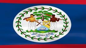 Acenar a bandeira de Belize, apronta-se para o laço sem emenda ilustração royalty free