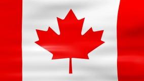 Acenar a bandeira de Canadá, apronta-se para o laço sem emenda filme