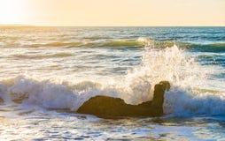 Acene o espirro contra a rocha na costa da praia com o céu idílico do crepúsculo do por do sol foto de stock