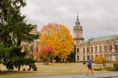 Acentos brillantes del otoño de la ciudad Fotografía de archivo