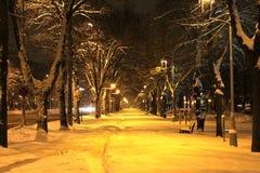 Acera cubierta con nieve Fotos de archivo