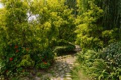 Acera del adoquín en arbusto Fotos de archivo
