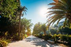 Acera en el Paseo del Parque en Málaga, España Foto de archivo libre de regalías