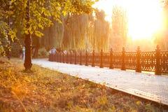 Acera en parque de la ciudad en la puesta del sol imagen de archivo libre de regalías