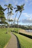 Acera por el mar, Maui, Hawaii foto de archivo libre de regalías