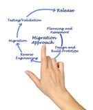 Acercamiento de la migración fotografía de archivo libre de regalías