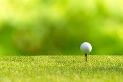 Acercamiento de la pelota de golf a la camiseta apagado en el verde para el golf del oscilación en día de vacaciones imagenes de archivo
