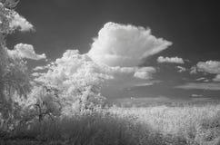 Acercamiento de la tempestad de truenos Foto de archivo