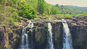 Acercamientos del abejón cerca de las cascadas estrechas en montaña