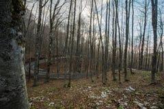 ` Acero de Forca d, acesso ao ` Abruzzo de Parco Nazionale d, Itália foto de stock royalty free