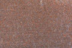 Acero de hoja con moho Fotos de archivo