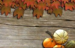 Acero rosso su legno Fotografia Stock