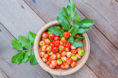 Acerola Cherry Stock Images