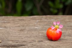 Acerola cherry of thailand on wood. Select focus, Barbados cherr. Acerola cherry and flower of thailand on wood. Select focus, Barbados cherry, Malpighia Royalty Free Stock Photos