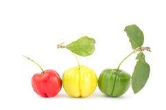 Acerola cherry Royalty Free Stock Photography