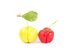 Acerola cherry Stock Photography