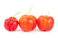 Acerola cherry Stock Image