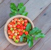 Acerola Cherry Royalty Free Stock Photo