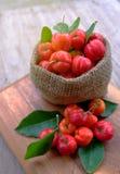Acerola fruit close up on background Stock Photos