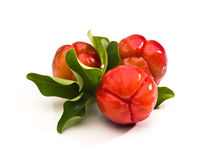 Acerola fruit Stock Photos