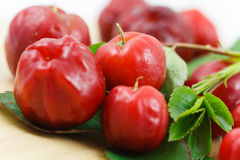 Acerola small cherry fruit with high quantity C Vi. Close up,Acerola small cherry fruit with high quantity C Vitamin Royalty Free Stock Photography