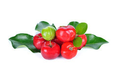 Acerolafrucht Lizenzfreies Stockfoto