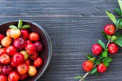 Acerolakörsbär Arkivfoto