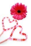 acessórios cor-de-rosa do casamento Fotografia de Stock Royalty Free