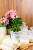 Acessórios do banho Artigos da higiene pessoal Imagens de Stock Royalty Free