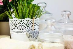 Acessórios do banho Artigos da higiene pessoal Fotografia de Stock Royalty Free