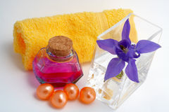 Acessórios do banho e produtos de beleza imagens de stock