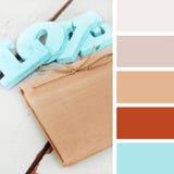 Acessórios do casamento amostras de folha da paleta de cores matiz pasteis Fotografia de Stock Royalty Free