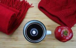Acessórios do inverno Fotografia de Stock