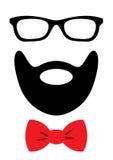 Acessórios do partido ajustados - vidros, bigode, curva Foto de Stock Royalty Free