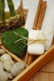Acessórios dos TERMAS para o wellness ou o relaxamento Imagem de Stock Royalty Free