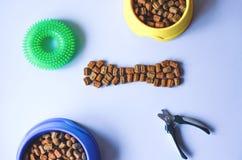 Acessórios e alimento sob a forma dos ossos para animais de estimação fotos de stock