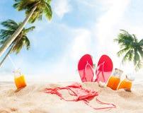 Acessórios Juice Bikini Slippers Palm da areia da praia fotografia de stock royalty free