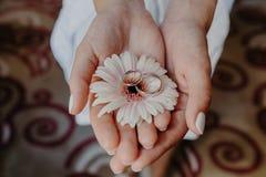 Acessórios nupciais As alianças de casamento na flor bonita na mulher domam as mãos internas Tiro horizontal Conce do feriado e d Imagens de Stock
