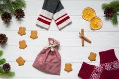 Acessórios tradicionais do Natal, árvore de abeto com os cones, secados ou imagem de stock royalty free