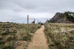 Acesso à praia que surfa Fotografia de Stock Royalty Free
