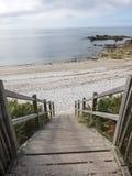 Acesso de madeira da escada à praia Imagens de Stock