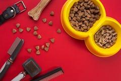 Acessories für das Pflegen des Hundes Kämme und Bürsten für Hunde Beschneidungspfad eingeschlossen Lizenzfreie Stockfotografie