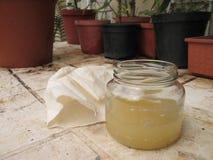 Aceto di sidro di fermentazione Apple in barattolo fotografia stock libera da diritti