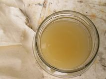 Aceto di sidro di fermentazione Apple in barattolo immagini stock libere da diritti