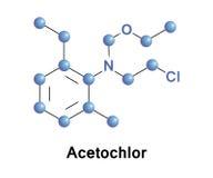 Acetochlor除草药chloroacetanilide 免版税图库摄影