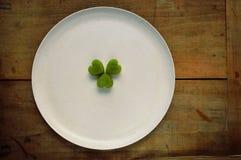 Acetosella/trifoglio su un piatto Fotografia Stock Libera da Diritti