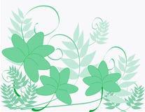 Acetoselle e viti royalty illustrazione gratis