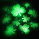 Acetoselle verdi di scintillio. Fotografie Stock Libere da Diritti