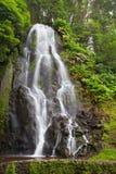 Achada-Wasserfall in Achada, Sao Miguel Lizenzfreie Stockbilder