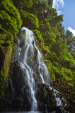 Achada waterfall. Small waterfall close to town of Achada in Sao Miguel, Azores stock images